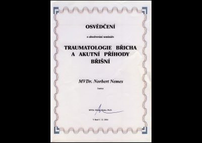 certifikaty00002