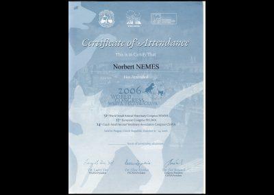 certifikaty00007