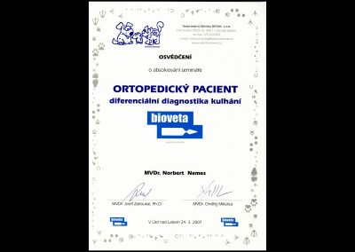 certifikaty00008