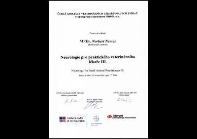 certifikaty00021